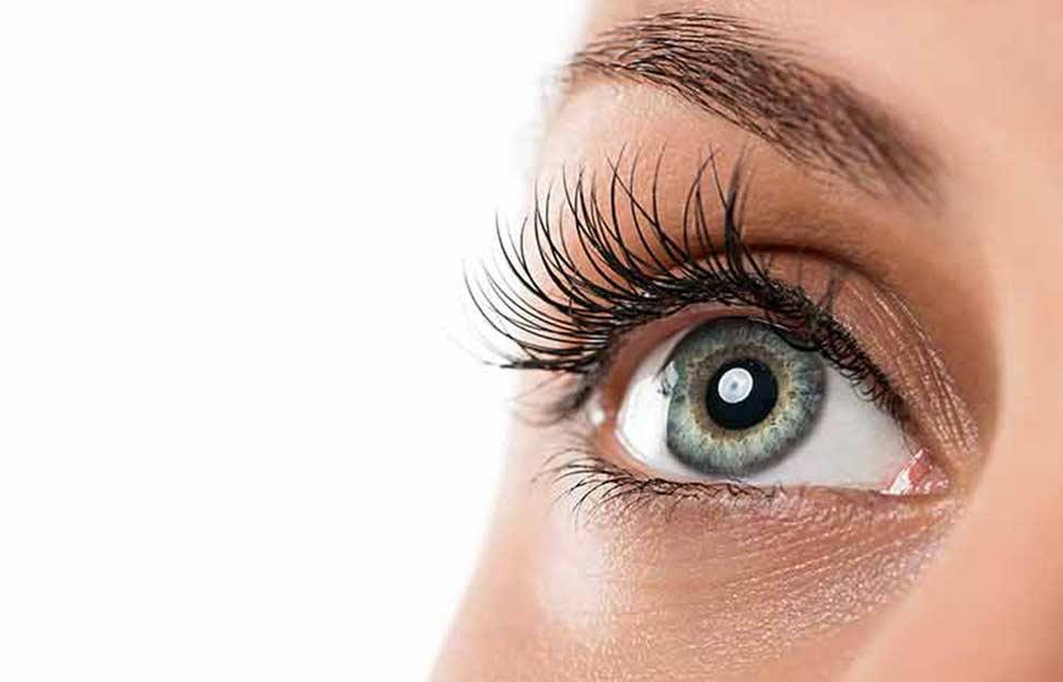 Ocular Diseases HP