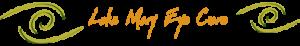 Lake Mary Eye Care Logo